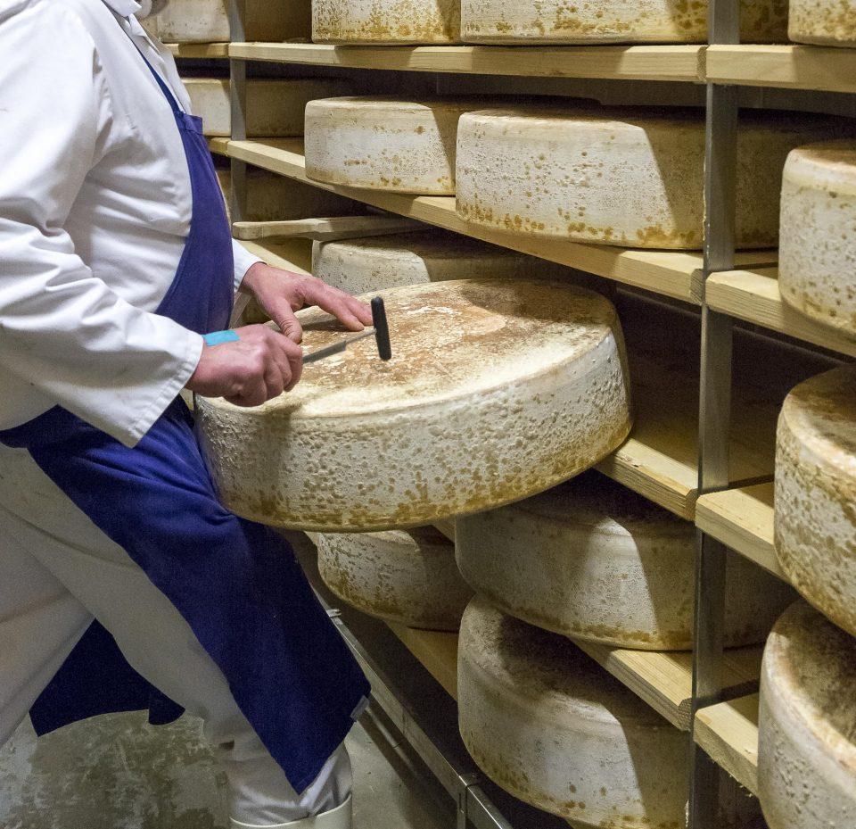 Affinage Beaumont de Savoie Pochat et fils fromage